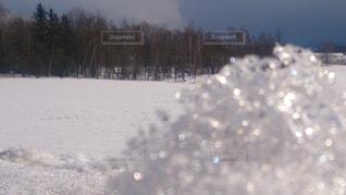自然の写真・画像素材[673401]