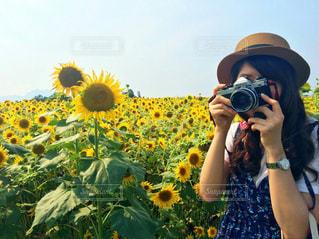 夏の写真・画像素材[673672]