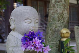 紫の花と花瓶の写真・画像素材[761231]