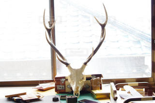 窓の前に机の写真・画像素材[1025710]