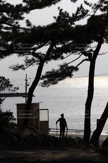 海の写真・画像素材[674311]