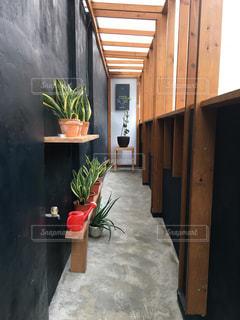 ドアの前に座っている花の花瓶の写真・画像素材[713200]