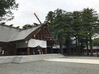 北海道神宮の写真・画像素材[703682]
