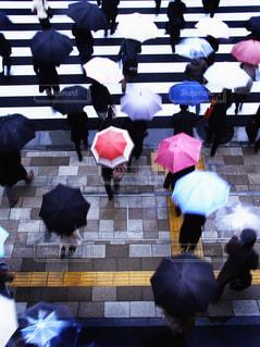 雨の写真・画像素材[676694]