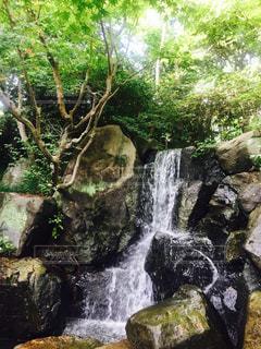 滝の写真・画像素材[676300]