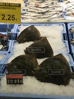 海外の魚市場 - No.846248