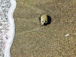 人面石の写真・画像素材[1101668]