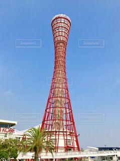 神戸ポートタワー 青空の写真・画像素材[1312239]