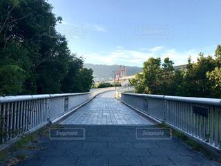歩道橋の写真・画像素材[1328548]