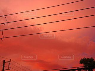 真っ赤な空の写真・画像素材[1336012]
