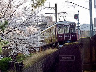 阪急電車と桜の写真・画像素材[1393366]