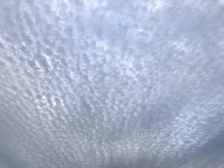 雲の写真・画像素材[1625958]