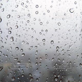 雨粒の写真・画像素材[2219147]