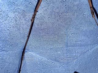 雨粒の写真・画像素材[2263235]