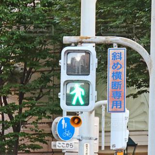 歩行者用信号機の写真・画像素材[2427190]