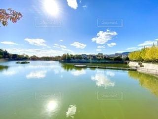 池の写真・画像素材[2694155]
