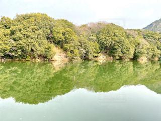 池の写真・画像素材[2869375]