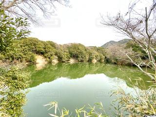 池の写真・画像素材[2869425]