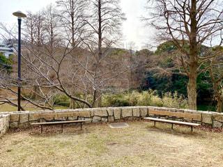 公園の写真・画像素材[2869433]