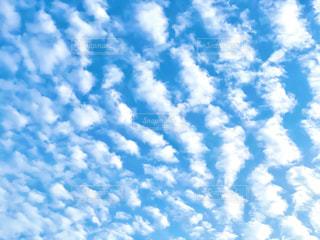 空の写真・画像素材[3235519]