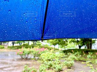 雨の日の写真・画像素材[3335545]