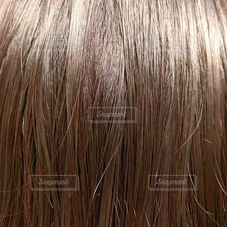 髪の写真・画像素材[3538486]