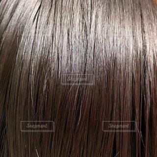 髪の写真・画像素材[3563980]