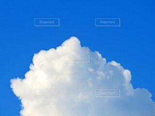 雲の写真・画像素材[3617176]