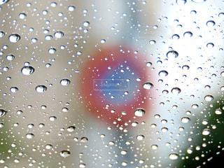 雨粒の写真・画像素材[3641149]
