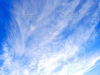 空の写真・画像素材[3685623]