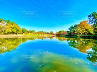 風景の写真・画像素材[3897686]