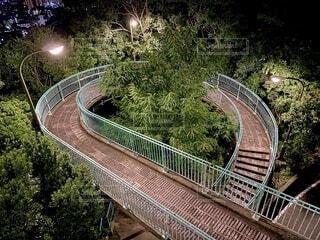夜のビーナスブリッジの写真・画像素材[4728613]