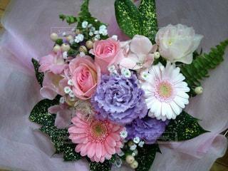 花の写真・画像素材[682377]
