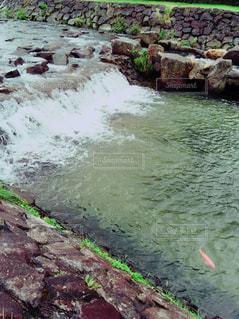 川の写真・画像素材[725167]
