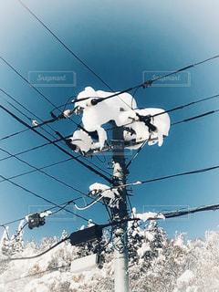 雪景色と電信柱 - No.921380