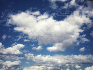 空を駆ける子犬 - No.1201439