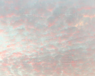 夕景の写真・画像素材[1388904]