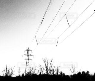 鉄塔と樹木の写真・画像素材[1646823]