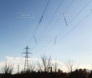 鉄塔と樹木たちの写真・画像素材[1646843]
