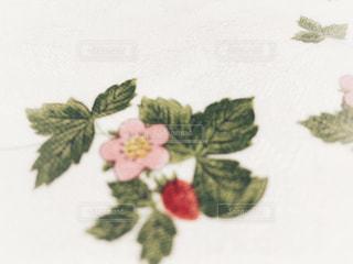 テーブルの上の花の花瓶の写真・画像素材[1672659]