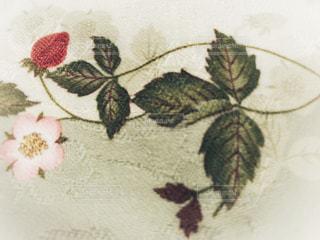 近くの花のアップの写真・画像素材[1672661]