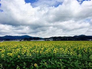 No.677467 風景