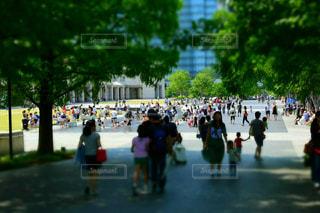 横浜の写真・画像素材[685837]