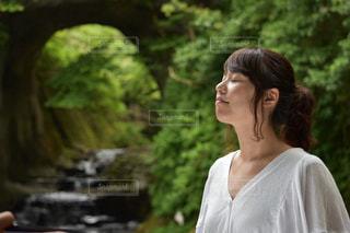 森林浴の写真・画像素材[686031]