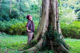大木の横で見上げるピエロの写真・画像素材[930217]