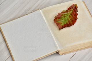 古い本と落ち葉の写真・画像素材[3470328]