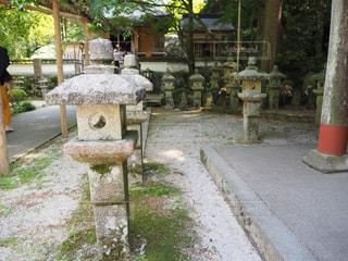 お寺の写真・画像素材[773334]