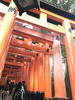 京都の写真・画像素材[678145]
