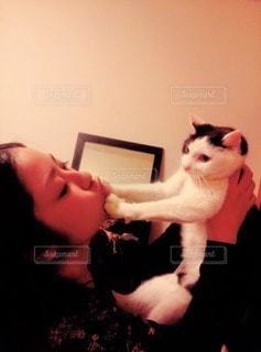 猫の写真・画像素材[33657]