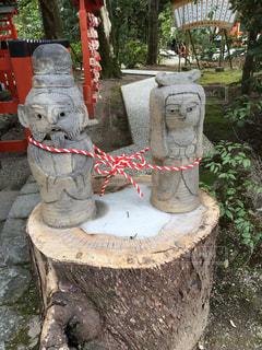 京都の写真・画像素材[680694]